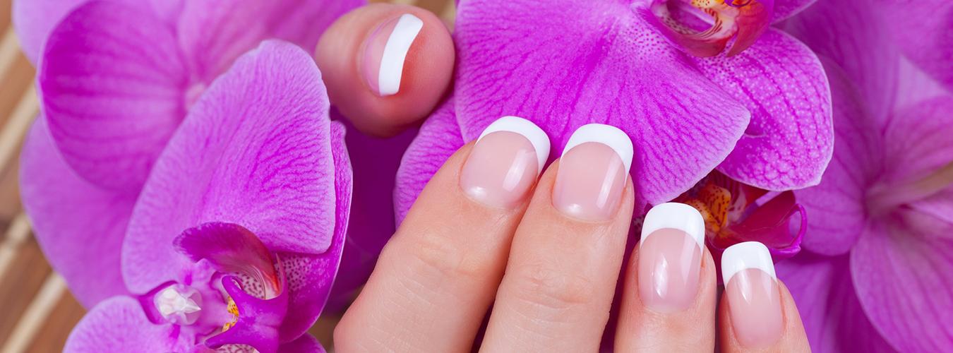 slide_orchid.png
